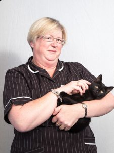 Shearbridge Staff Member Holding Black Cat